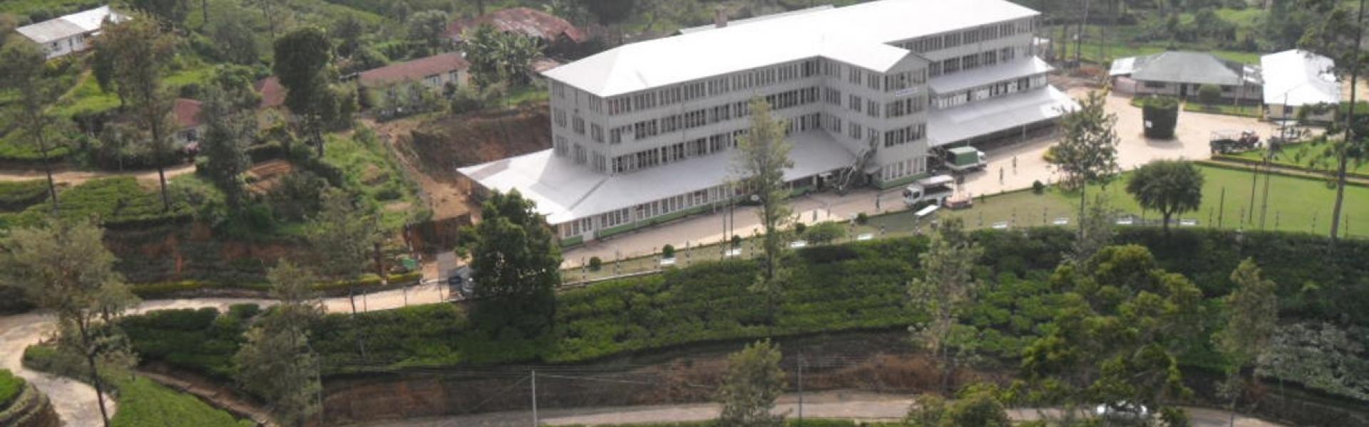 Foundation pays evaluation visit to tea estates